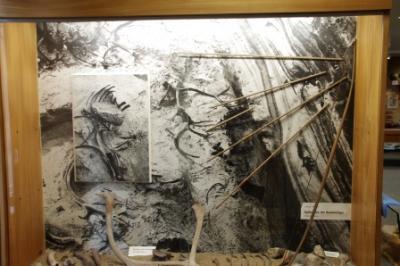 Grabungsbefunde aus dem Stellmoortal